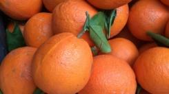 oranges-fruit-moist-healthy