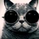 youtube_BalaloA_Gramatik_MuyTranquilo_DJVitaminDRe-Edit